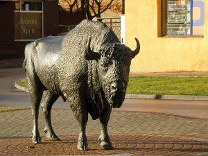 Pomnik żubra, który jest symbolem miasta